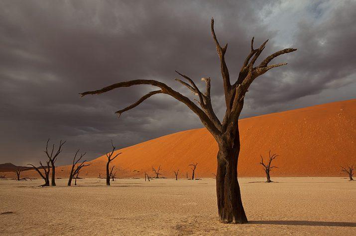 Namibijská poušť